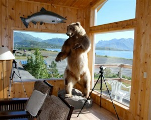 The loft of Kodiak Sportsman's Lodge with a Kodiak bear and and a King Salmon mounted; binoculars for wildlife viewing and comfortable recliners.