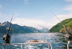 The view from the back of a fishing boat. There are two downriggers, some bait and beautiful Kodiak Alaska mountains.