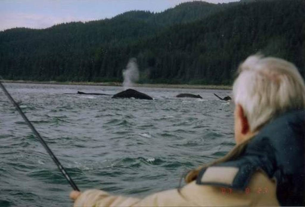 fishing-in-alaska-with-whales