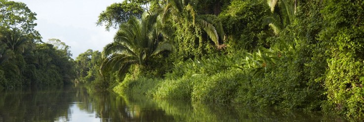 belize-fishing-lodges-river