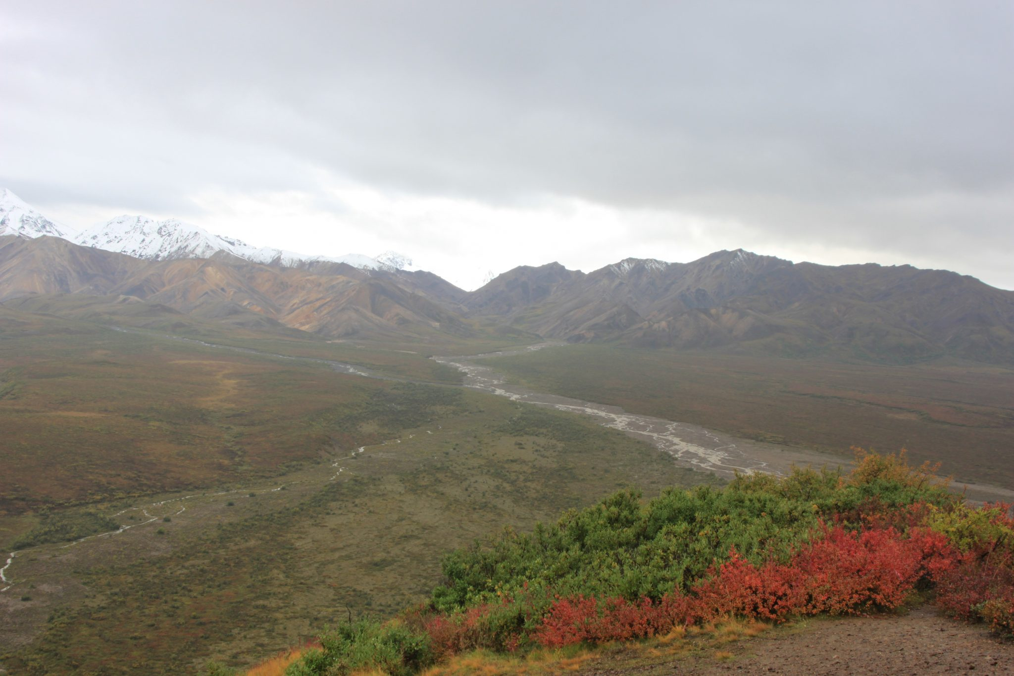 Luxurious Fishing Vacations Alaska Train Denali River Valley