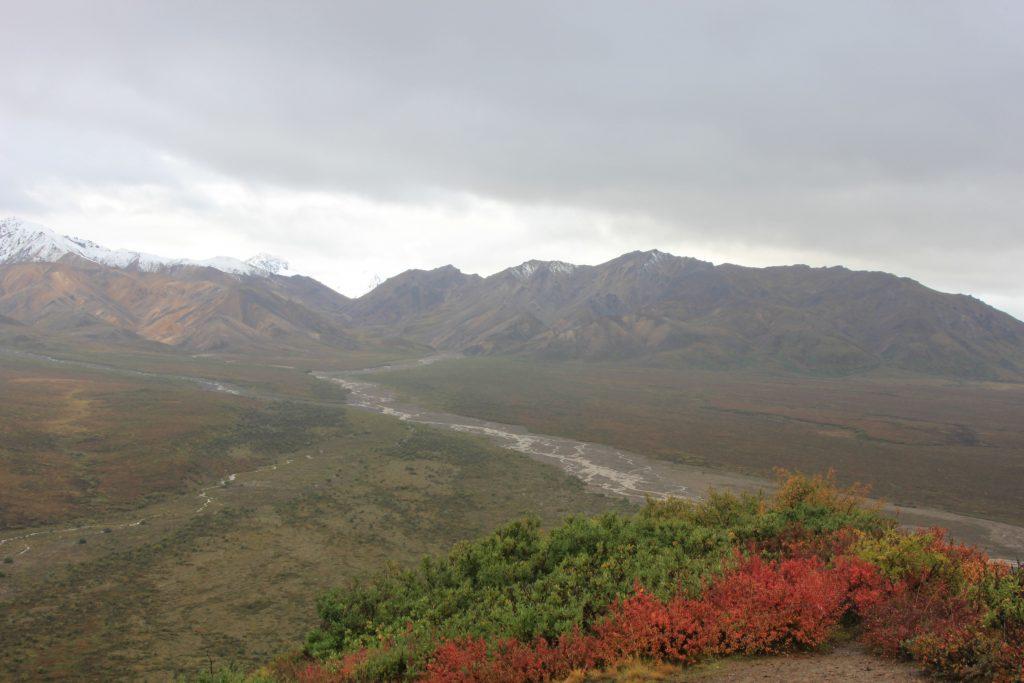 Denali National Park river