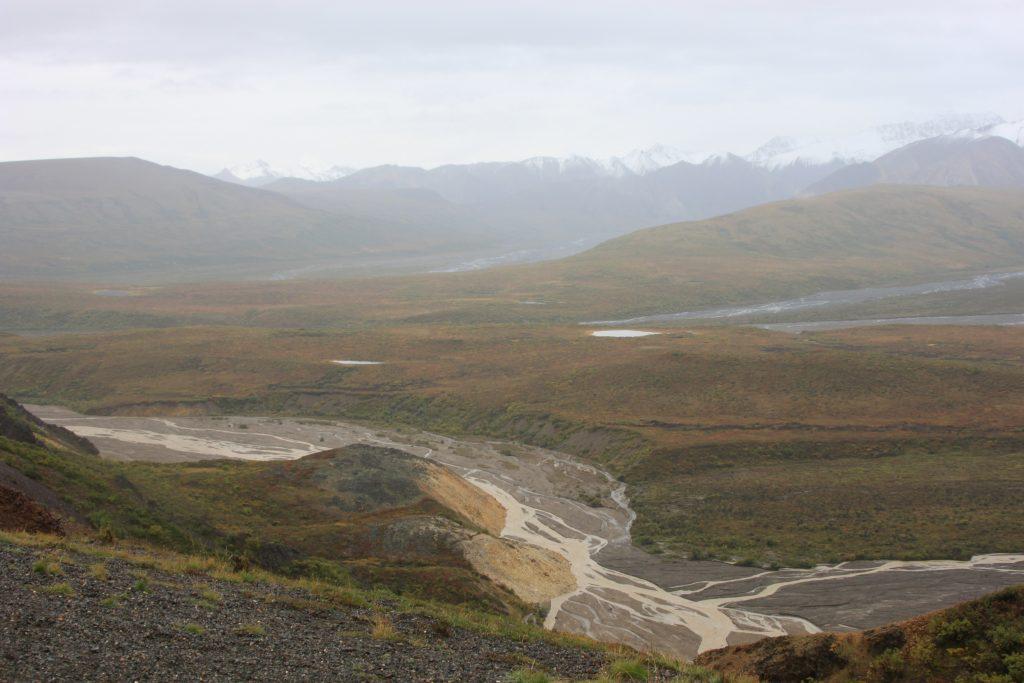Denali National Park delta