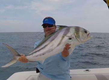 Costa Rica fishing season roosterfish